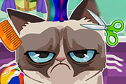 game Angry Cat Hair Salon
