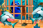game Find And Release Dory